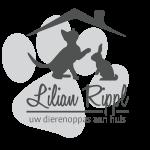 Lilian Rippl :: Uw dierenoppas aan huis!